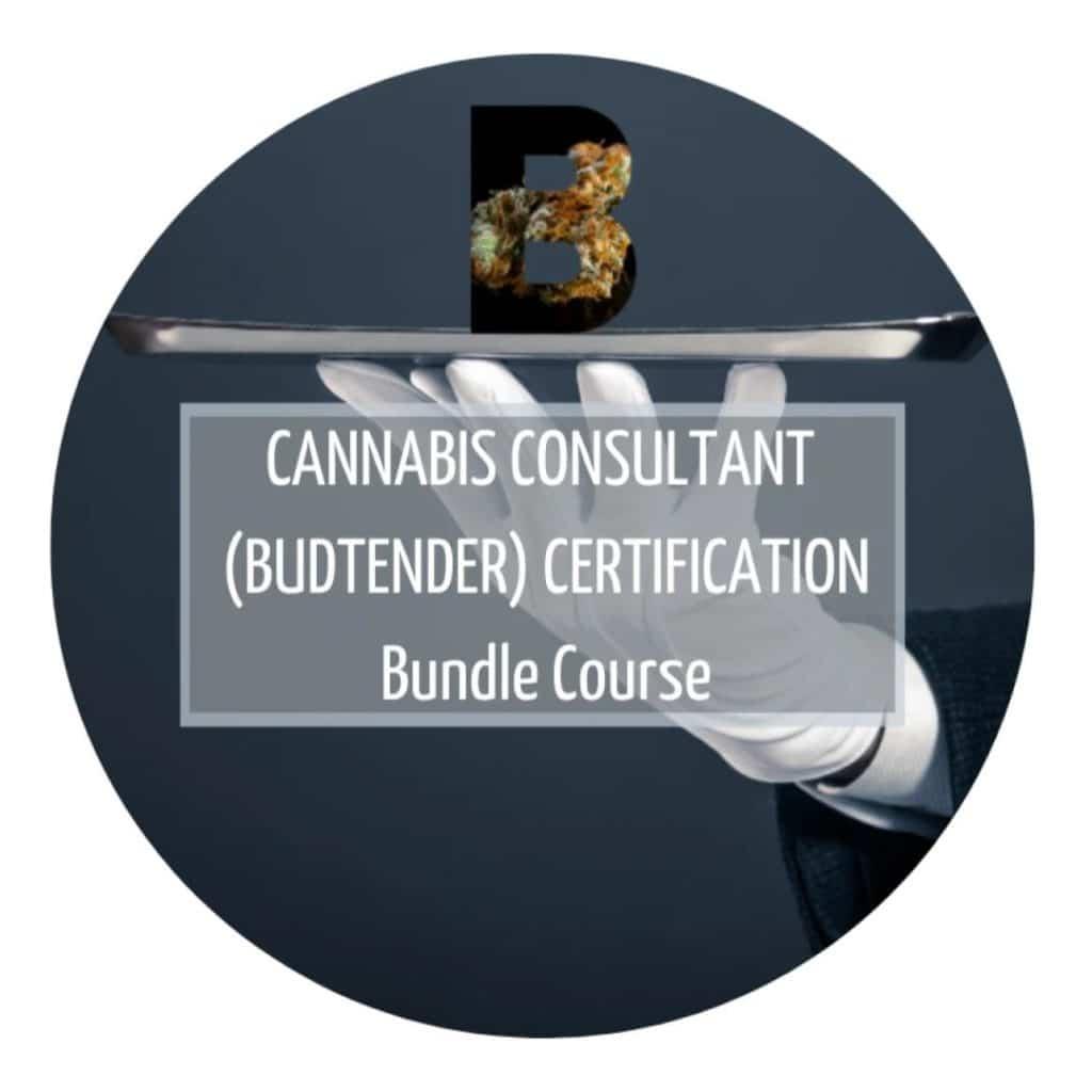 Cannabis Consultant Bundle Course